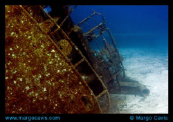 The Sea Star wreck - off the coast of Freeport. by Margo Cavis 